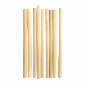 Bamboo Eco Straws - Set 9