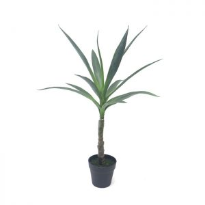 Fake Plant 35